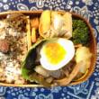 今日のお弁当 (4月5日)