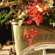 美濃市重伝建地区の正月風景