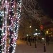 シャンソン歌手リリ・レイLILI LEY  雪の成城ノスタルジー