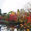 友人が 京都 永観堂の紅葉 の情報を送ってくれました