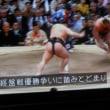 鶴竜10連勝(単独)