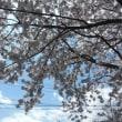 四万温泉の遅い春の足音がもうすぐそこまで・・