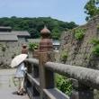 鶴丸城 はす