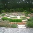 「熱帯・亜熱帯都市緑化植物園」沖縄国際海洋博覧会の後、作られた海洋博公園の中に!