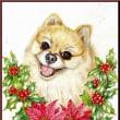 色鉛筆画396 (クリスマス・犬)