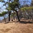 百蔵山に登って富士山を撮影~大月市④終
