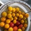 「トマト」