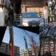3月15日(木)クイーン・エリザベス入港