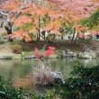 にしさんの花日記 紅葉 成田山 池の紅葉