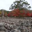 紅葉の嵐山(祇王寺・化野念仏寺)と上本町Koin