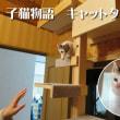 福岡  賃貸住宅・新生活の知恵・入居前の簡単DIY(不動産情報ブログ書いています♪) 福岡市南区高宮