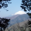 暑さは夏・でも富士山と南アルプスの眺望に癒やされる丹沢;塔ノ岳(2018年12回目)