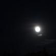 「お月見」