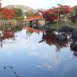 福井の武生に【紫式部公園】があるのご存知ですか?
