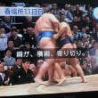 大相撲・鶴竜11連勝