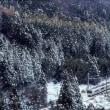 福知山線を駆けた電車221系