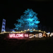 Shibata Fantasy Illumination 2018に行ってきました!