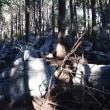 カレンフェルトが見られる竜ケ岩山