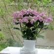 母の日プレゼントの花3