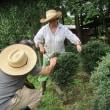●8/20 大久保農園 スズメバチはいるし、トラクターはまるし・・・