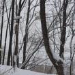 真冬に逆戻りした札幌近郊の山々