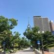 福岡市博物館へ