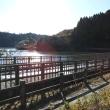 昭和の森散策・・・