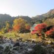 秋を切り撮る・紅葉三昧 ②