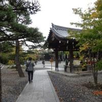 紅葉の京都に行ってきました!