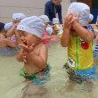 しろ・すみれ 1歳児 体育館活動・プール