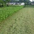 暑い日差しの中、汗だくで畑の草刈り