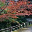 瀬高町の清水寺からp3(三重塔)