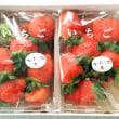 香りも甘い新品種◇◆かおりの◆◇佐賀県太良町