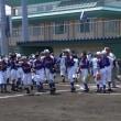 平成29年度全日本スポーツ少年団野球大会 中越地区Aブロック予選会 2日目
