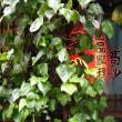 金沢diary,180日(109)