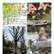 散策 「東京北東部-424」 ほんちょう公園 通称:たこ公園