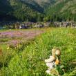 今年オープン「京都丹波高原国定公園ビジターセンター」。美山や京北エリアを紹介
