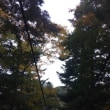 高尾山にて紅葉狩り