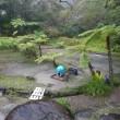奄美大島の大島紬村