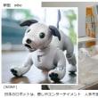 ロボット新時代到来!「AI+ロボット」癒しやエンターテイメント、人手不足解消の目的で浸透
