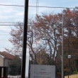体幹リハビリでは一昨日の大失敗を忘れてリハビリに邁進しましょう。施設の周りの木々も冬模様。