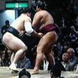 豪栄道vs.日馬富士 千秋楽決戦へ