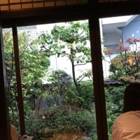 台風、投票、大和屋本店