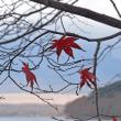 河口湖・山中湖の富士山