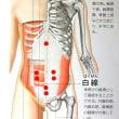 年末年始の胃腸の不調は「ハルチタンチップ」で癒やす