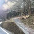 松阪市の観音岳と堀坂山