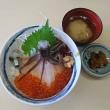 一花亭たびじ(函館朝市)