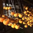 秋は干し柿