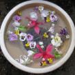 水鉢に浮かべた花