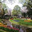 春は花見と探検に  index